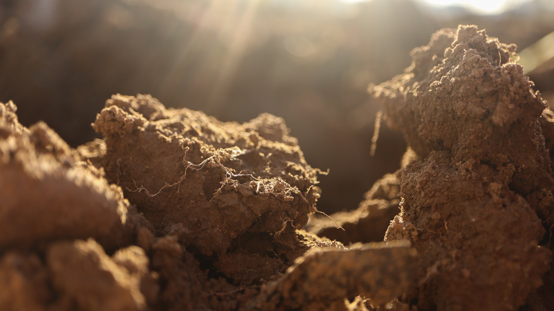 Soil_Sun
